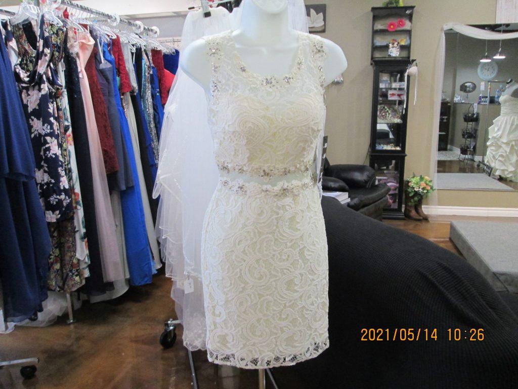 The Little White Dress